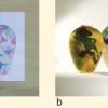 a) Progetto di: Ferronato Sharon; b) Realizzato da: Roberto Fido e Andrea Ziglio
