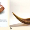 a) Progetto di: Baldin Giulia; b) Realizzato da: Mario Badioli e Guido Fabris