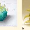 a) Progetto di: Verde Valentina; b) Realizzato da: Mario Badioli
