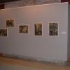 NEL SOGNO DI VENEZIA Trenta dipinti di Miranda Visonà (1912 – 1989), Sala 1
