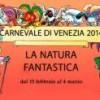 carnevale venezia 2014 ca' pesaro